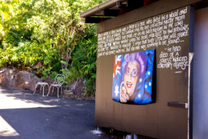 The Top 5 Things to do in Eumundi this long weekend!